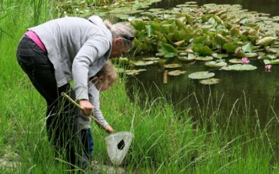 Tag dine børn med i naturen