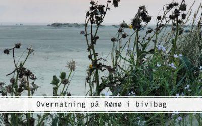 Rømø i bivibag – et mikroeventyr på stranden