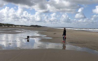 World Cleanup Day 2018: En formiddag ved vestkysten