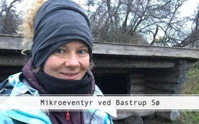 Et gensyn med Bastrup Sø fire år senere