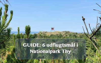 Guide: 6 udflugtsmål i Nationalpark Thy