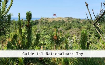 Guide til Nationalpark Thy – 6 udflugtsmål