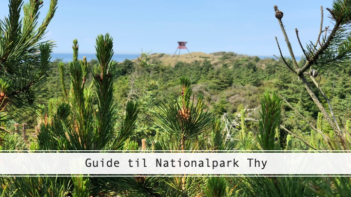 guide til nationalpark thy