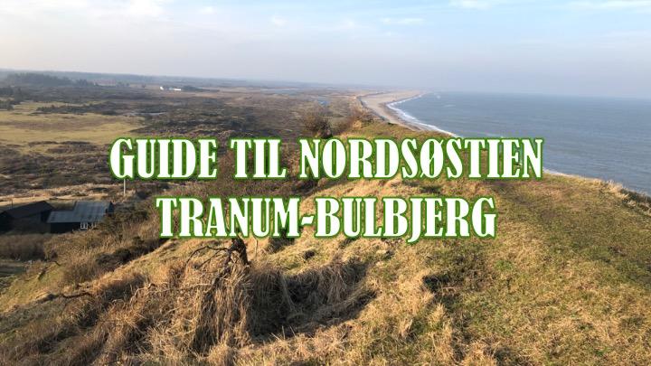 Nordsøstien: Guide til etapen Tranum-Bulbjerg