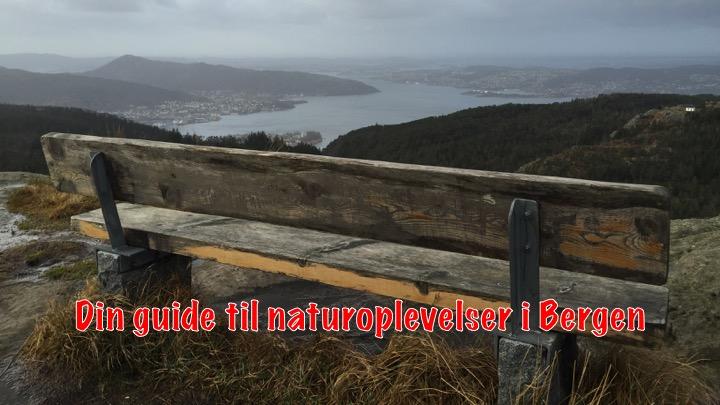 Dagsture i Bergen: Guide til naturoplevelser