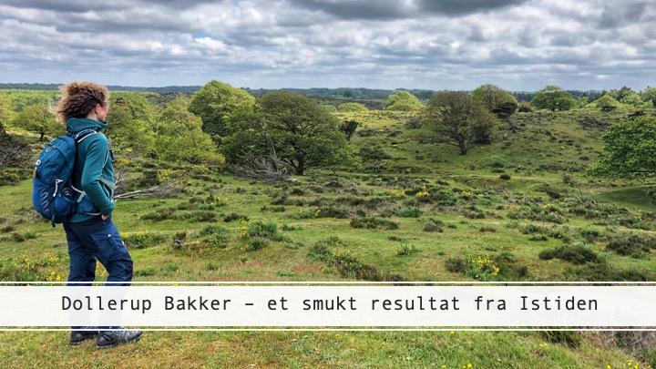 Dollerup Bakker