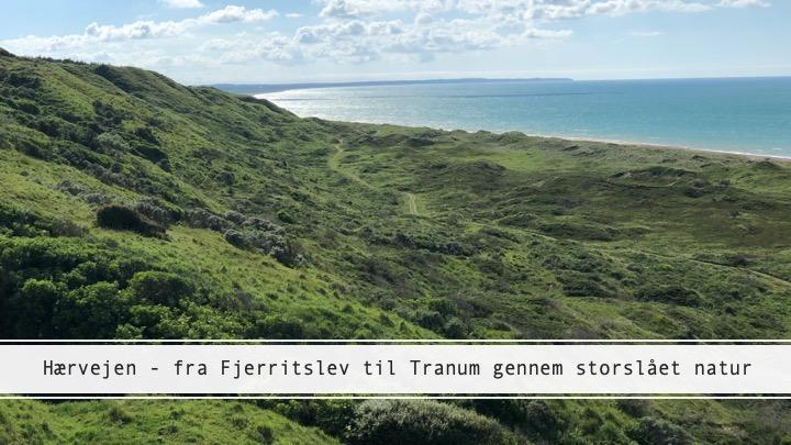Hærvejen – eventyrlig vandring mellem Fjerritslev og Tranum