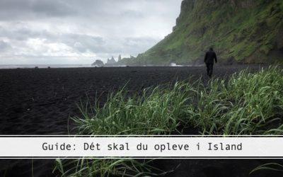 Rejseguide til Island: Alt dette kan du opleve på 5 dage