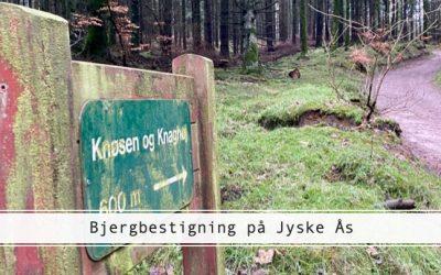 Bestig bjerge på Jyske Ås