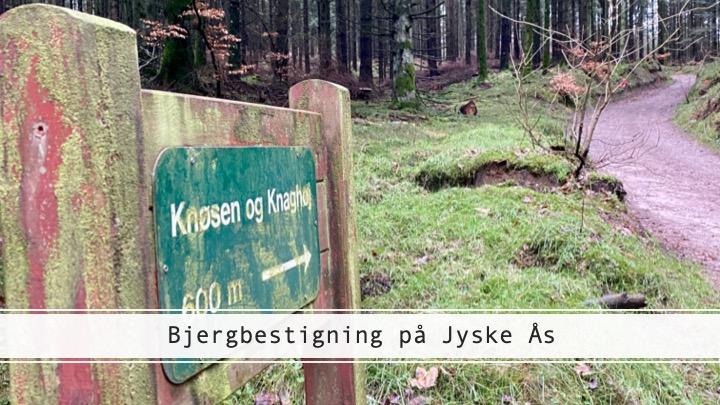 Jyske Ås