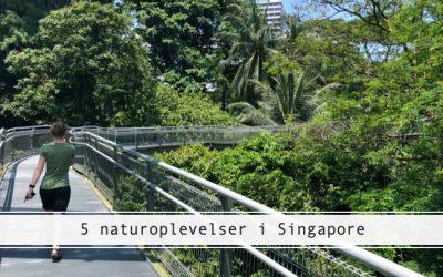 Din guide til naturoplevelser i Singapore