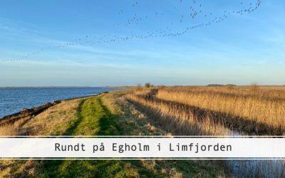 Egholm – et mikroeventyr i Limfjorden