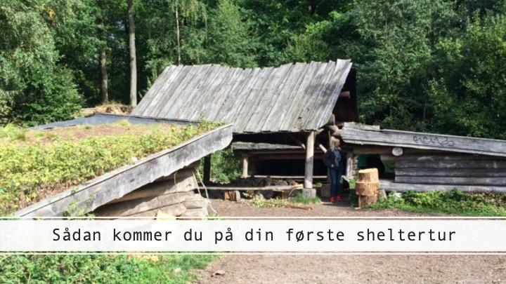 Guide til din første sheltertur