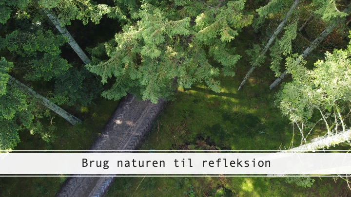 Brug naturen til at reflektere over dit liv