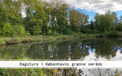 Dagstur i København på grønne stier